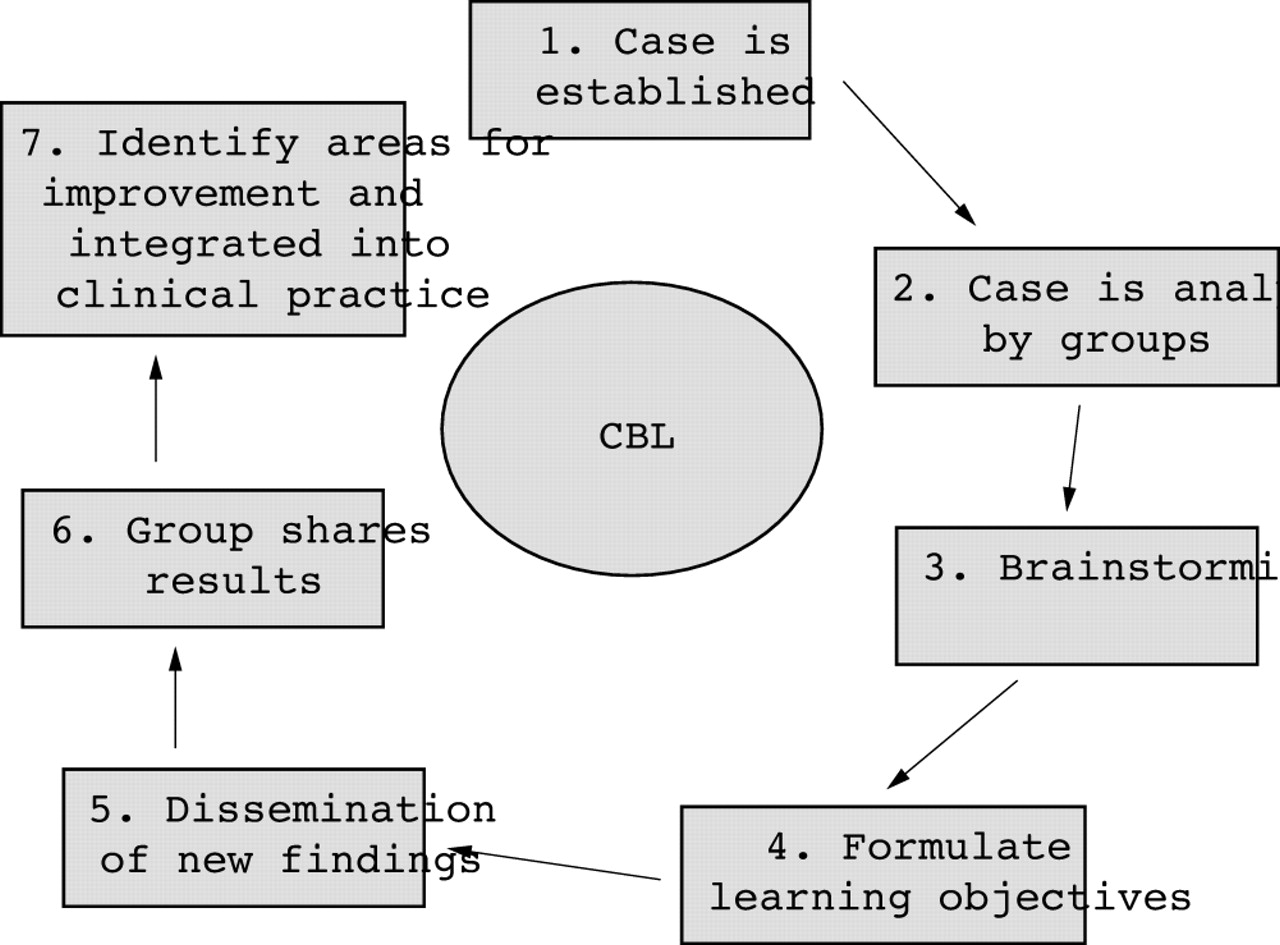 problem-based learning case studies experience and practice
